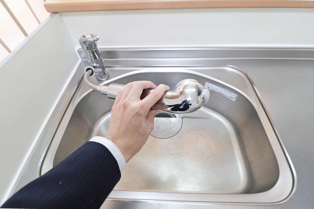 使い勝手のいいシャワー水栓に浄水器も付いています。伸縮性のあるノズルなのでシンクのお手入れが楽になります。