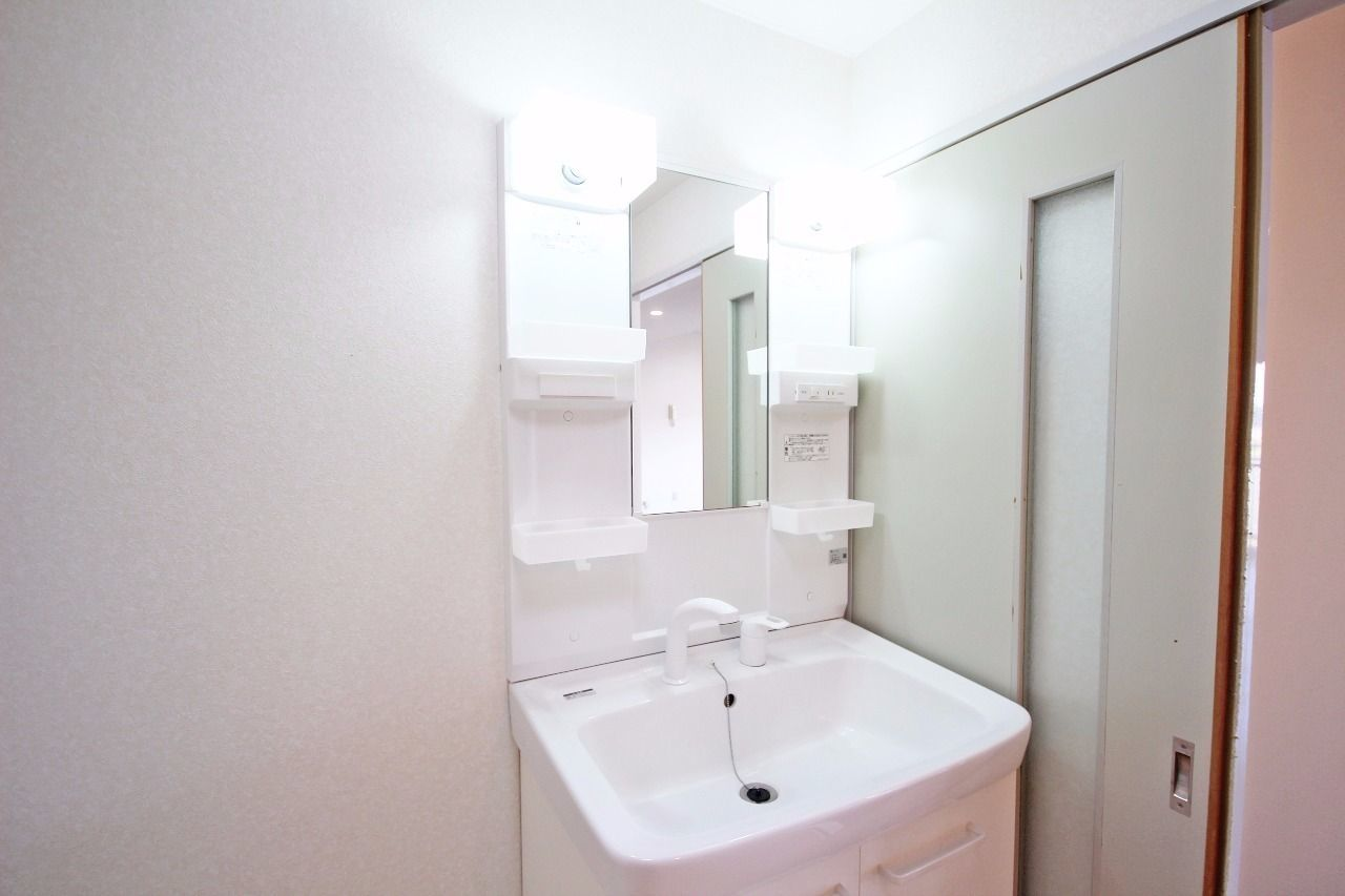 伸ばせるシャワータイプの洗面台。朝の寝癖直しに役立ちます。
