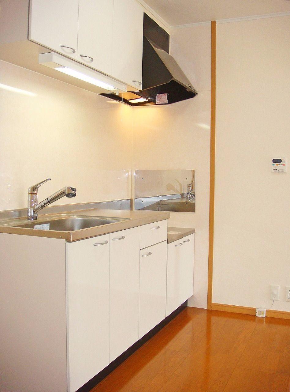 便利なハンドシャワー付きの水洗が付いています。別途購入が必要ですが、浄水カートリッジも使えます。