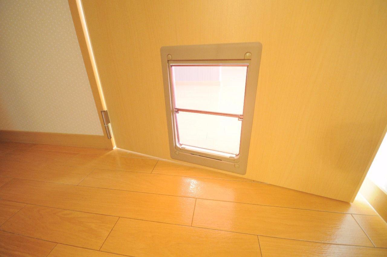 建具にはペット専用のドアがあります。間取り図にもありますが、トイレスペースもありますよ!まさしくペット可物件!