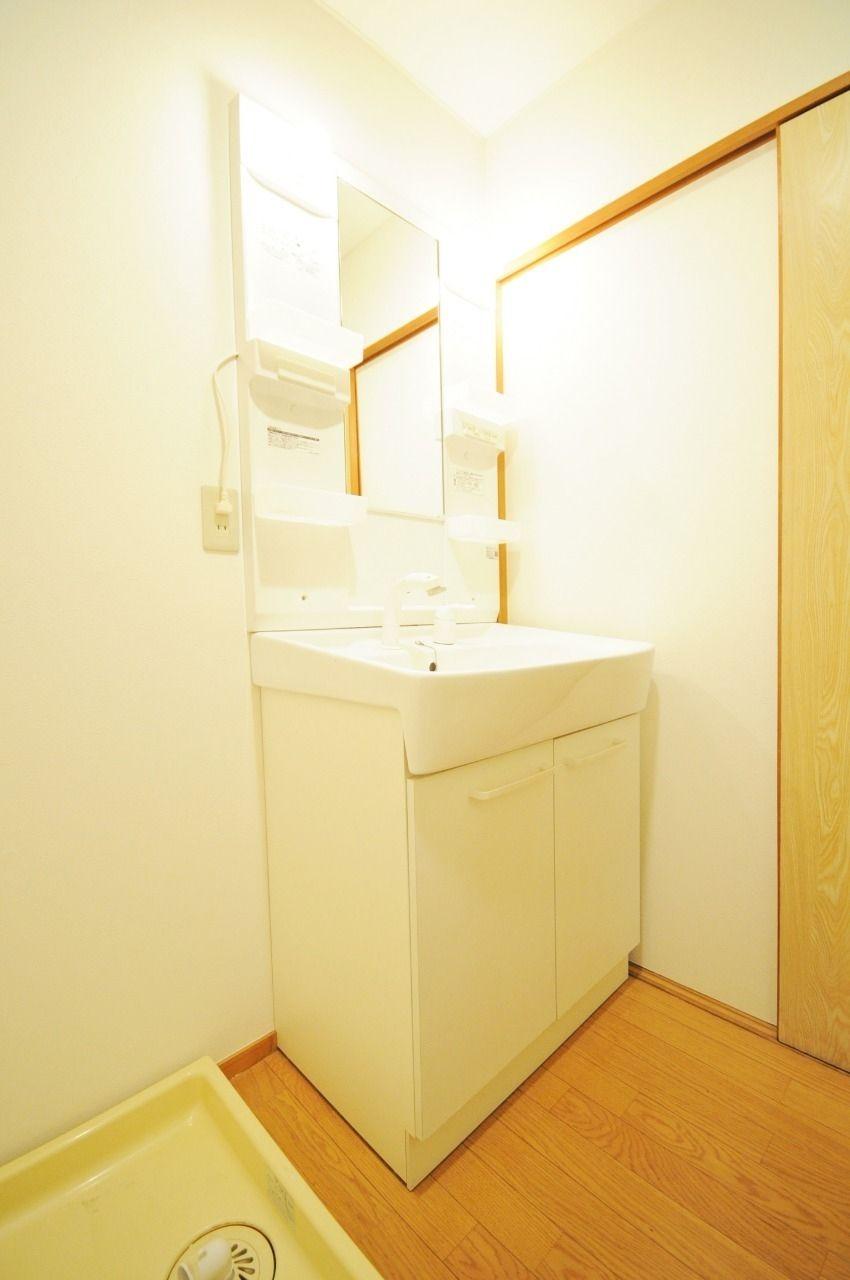 ハンドシャワータイプの洗面台です。シャンプードレッサーも付いていて、収納力もあります。