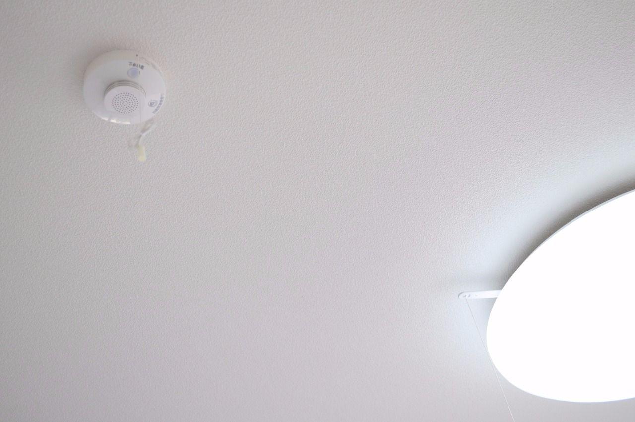 ヤマモト地所の賃貸アパートのラピンラポンA 101の内観の23枚目