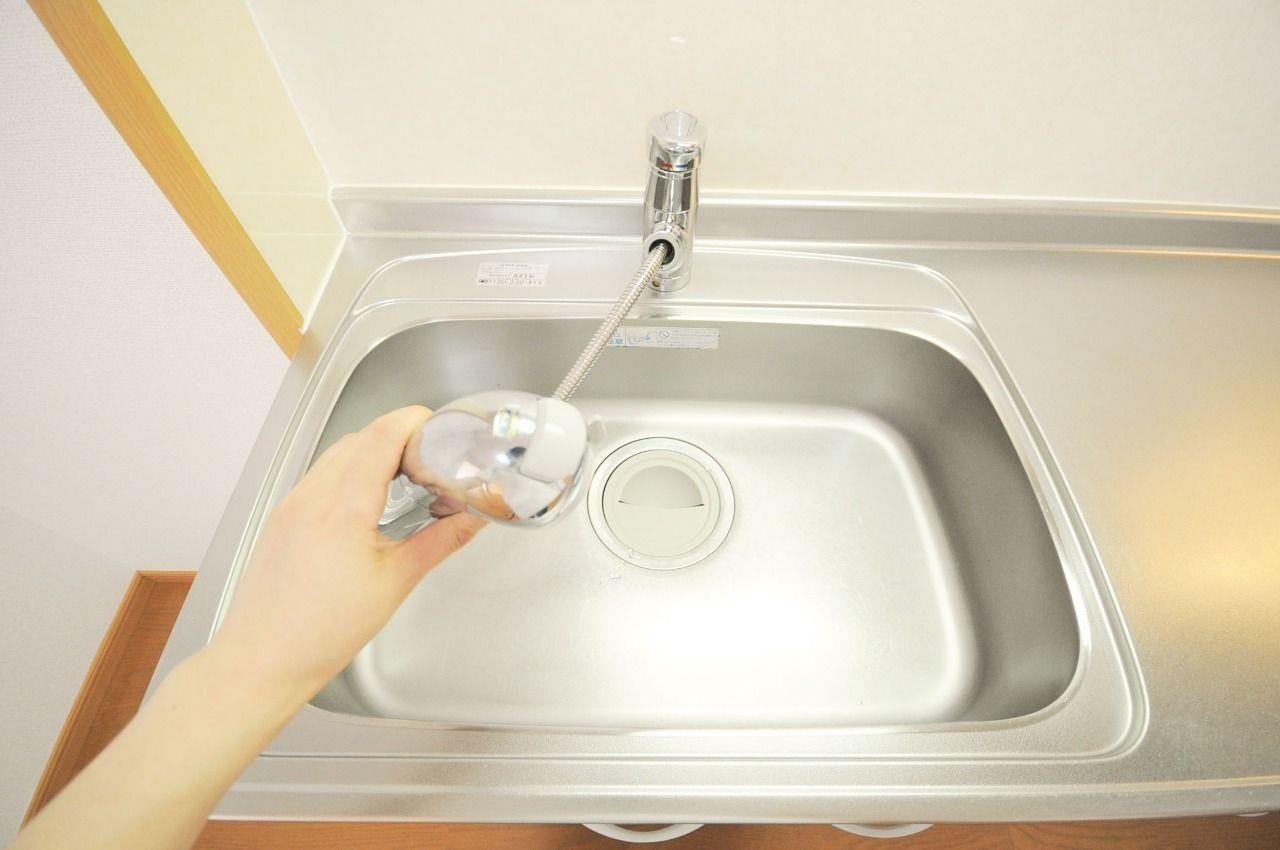 浄水器・ハンドシャワー付きの頼れる水栓。