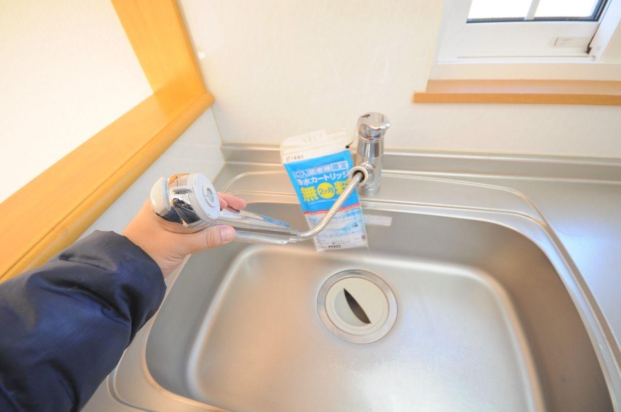 便利なハンドシャワータイプです。別途カートリッジの購入が必要ですが、浄水機能も使えます。