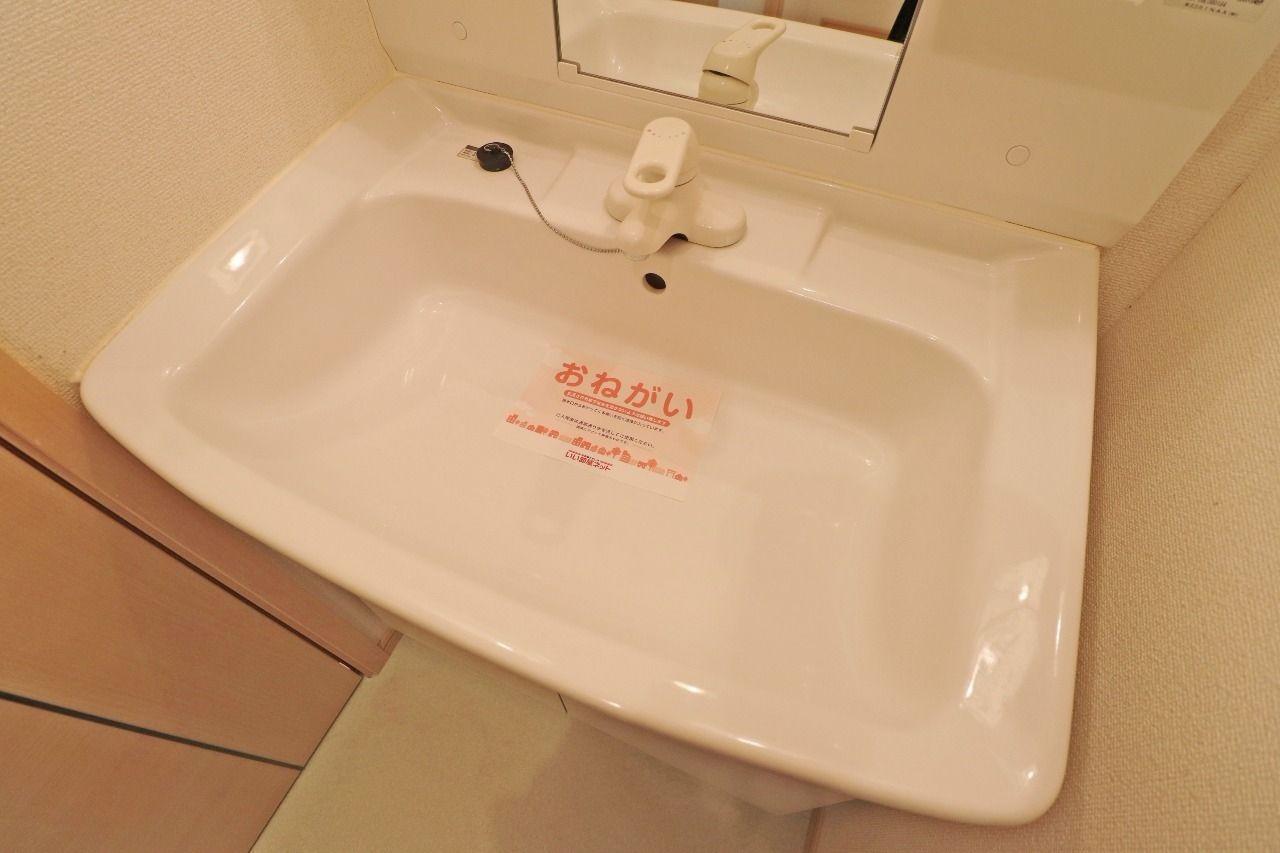 広めのボウルなので、手洗いでお洗濯をすることがある場合など重宝します。