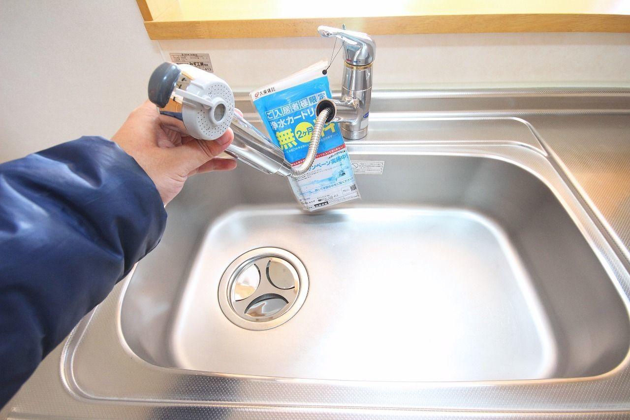 伸びるシャワー式水栓。シンクの隅っこの掃除もこれがあれば楽チンです。