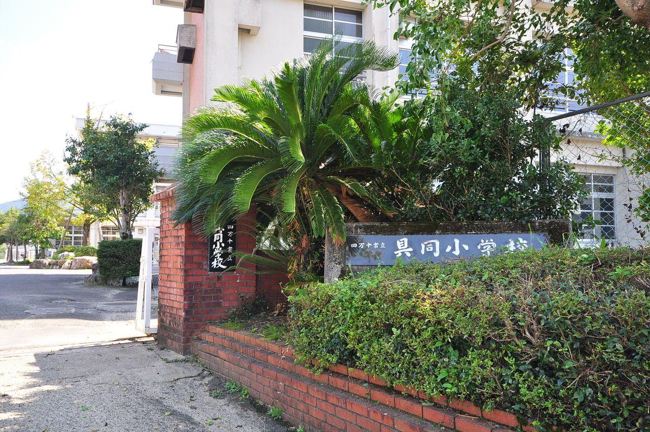 渡川の校区は具同小学校になります。徒歩約8分の距離です。お子さんが通う小学校が近場にあると安心ですね。
