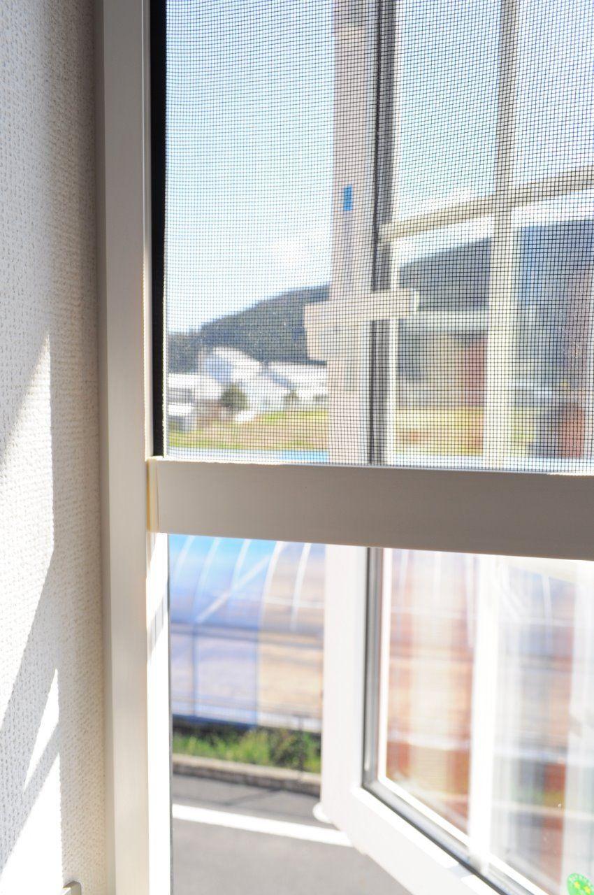 ヤマモト地所の西内 姫乃がご紹介する賃貸アパートのカーサ・エテルノB 203の内観の22枚目