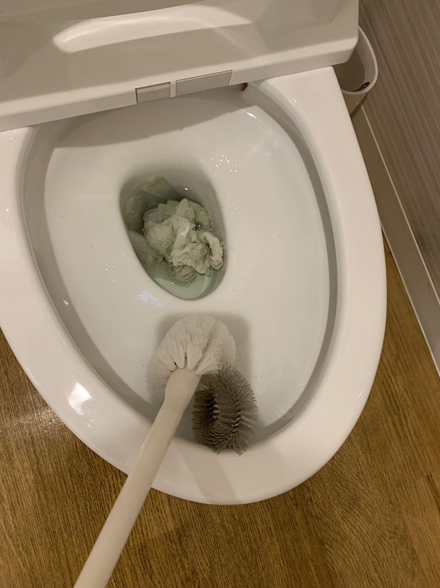 便器をブラシで洗う