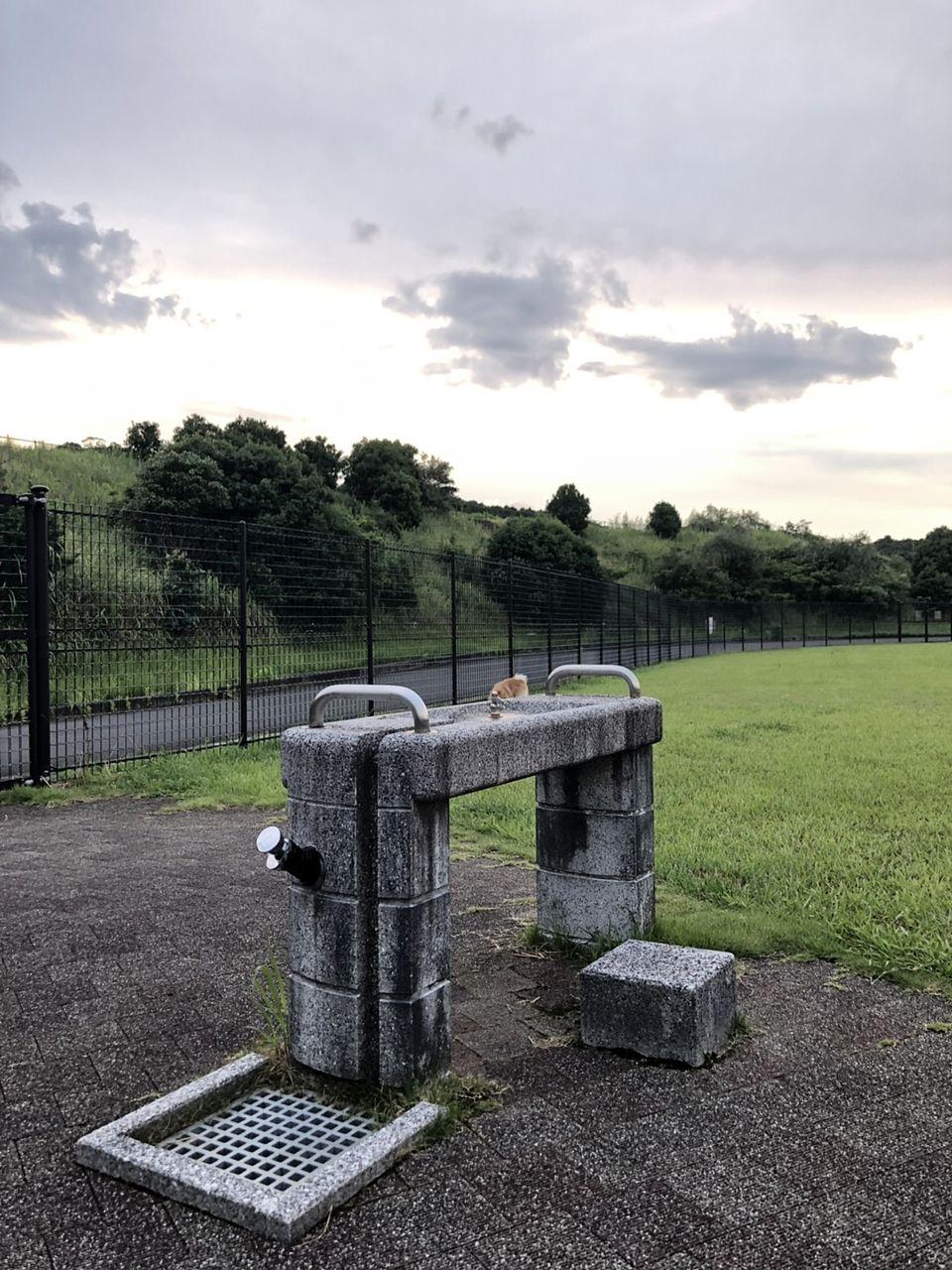 水栓 水飲み場 ドッグラン 公園