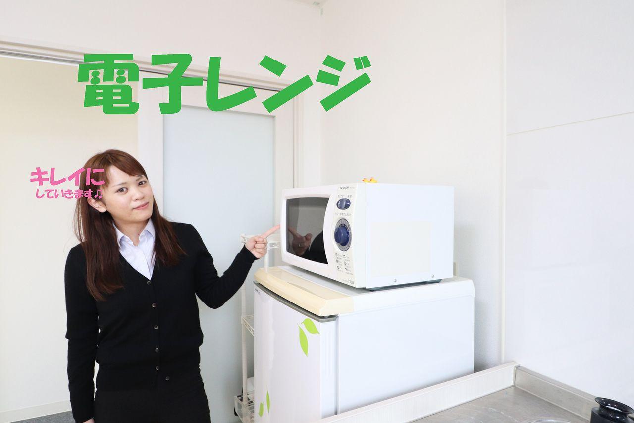 ヤマモト地所 電子レンジ