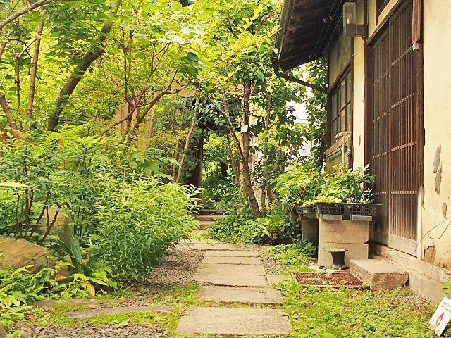 庭木や庭石のあるお庭