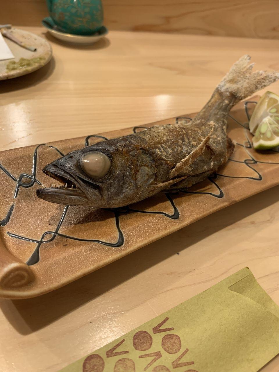コの字サカバmihokiのおまかせ料理