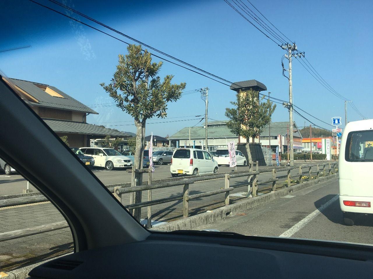 古津賀の街路樹を信号待ちでパシャリ