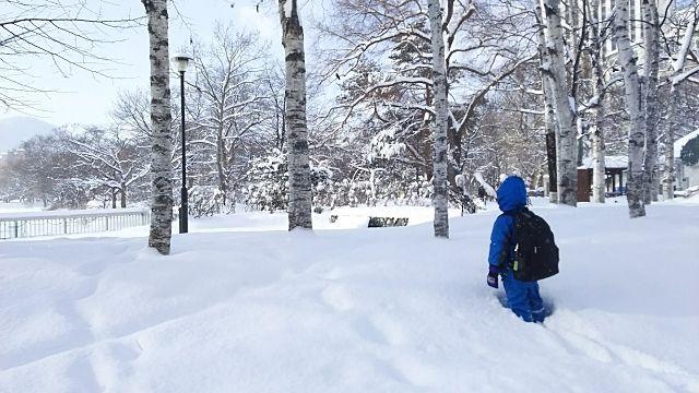 新雪を歩いている写真